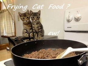 Frying  Cat  Food ?        ew!
