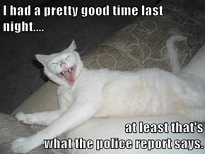 I had a pretty good time last night....  at least that's                                                    what the police report says.