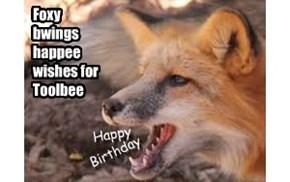 Happy Birfday Wishes fer Fwend Toolbee!
