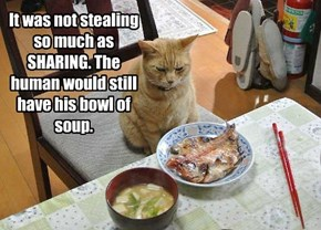 It was not stealing so much as SHARING. The human would still have his bowl of soup.