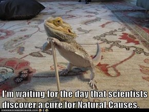 I'm waiting for the day that scientists discover a cure for Natural Causes.