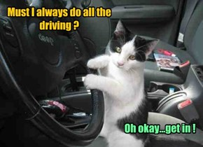 Must I always do all the driving ?