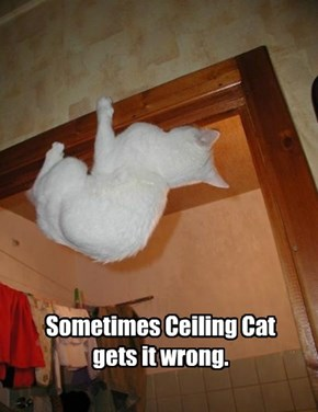 Sometimes Ceiling Cat gets it wrong.