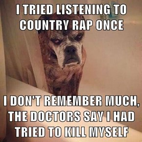 I TRIED LISTENING TO COUNTRY RAP ONCE  I DON'T REMEMBER MUCH, THE DOCTORS SAY I HAD TRIED TO KILL MYSELF