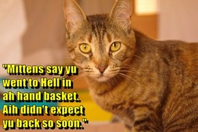 """Mittens say yu                                                                                went to Hell in                                                                                ah hand basket."