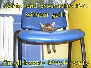 Denial and procrastination without guilt  On all levels= kitteh comfy