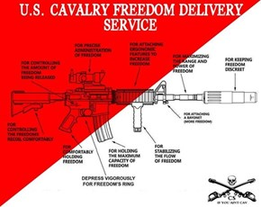 A Diagram of Your Standard Freedom Delivery Device