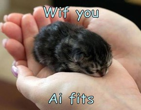 Wif you  Ai fits