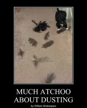 MUCH ATCHOO ABOUT DUSTING