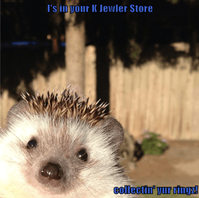 I's in your K Jewler Store  collectin' yur ringz!