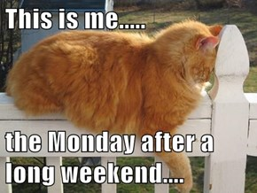 This is me.....  the Monday after a long weekend....
