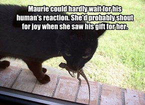 Maurie could hardly wait for his human's reaction. She'd probably shout for joy when she saw his gift for her.