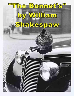 """The Bonnet's""         by William Shakespaw"