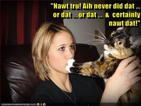 """Nawt tru! Aih never did dat ...                                         or dat ... or dat ...  &  certainly                                      nawt dat!"""