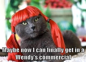 Maybe now I can finally get in a Wendy's commercial