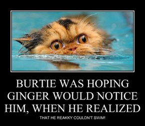 BURTIE WAS HOPING GINGER WOULD NOTICE HIM, WHEN HE REALIZED