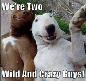 We're Two  Wild And Crazy Guys!