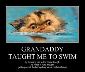 GRANDADDY TAUGHT ME TO SWIM