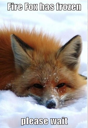 Fire Fox has frozen   please wait