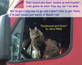 """Eastbound and Down"" by Jerry Reed"