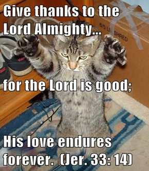 Give thanks to the Lord Almighty... for the Lord is good; His love endures forever.  (Jer. 33: 14)