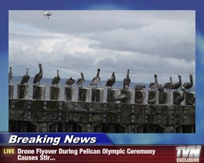 Breaking News - Drone Flyover During Pelican Olympic Ceremony Causes Stir...
