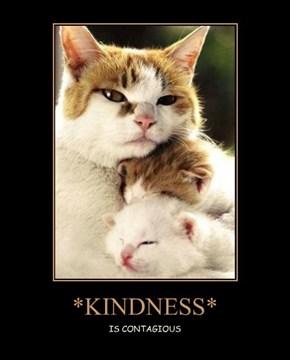 *KINDNESS*