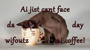 Ai jist cant face  da                             day wifoutz             mi coffee!