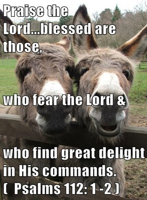 Praise the Lord...blessed are those, who fear the Lord & who find great delight in His commands.  (  Psalms 112: 1 -2 )
