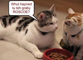 Whut hapned tu teh graby ROSCOE?