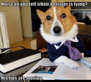 How can you tell when a lawyer is lying?  His lips are moving.