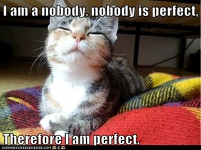 I am a nobody, nobody is perfect,   Therefore I am perfect.