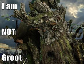 I am  NOT  Groot
