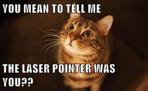 YOU MEAN TO TELL ME  THE LASER POINTER WAS YOU??