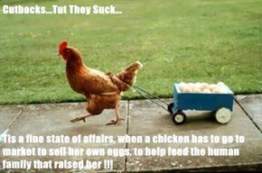 Cutbacks...Tut They Suck...  Tis a fine state of affairs, when a chicken has to go to market to sell her own eggs, to help feed the human family that raised her !!!