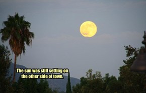 Southern California Super Moon