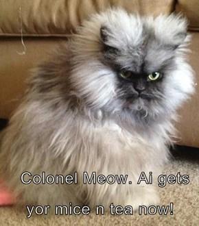 Colonel Meow. Ai gets yor mice n tea now!