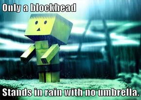 Only a blockhead  Stands in rain with no umbrella.