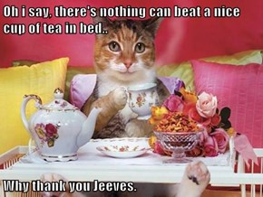 Oh i say, there's nothing can beat a nice cup of tea in bed..  Why thank you Jeeves.