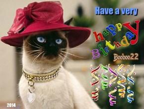 Birthday wishes from Alisaorrdaisy