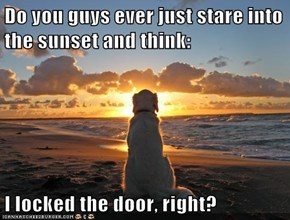 Do you guys ever just stare into the sunset and think:  I locked the door, right?