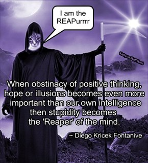 When obstinacy of positive thinking,      hope or illusions becomes even more       important than our own intelligence     then stupidity becomes       the 'Reaper' of the mind.