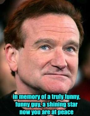 Robin Williams 8/11/2014