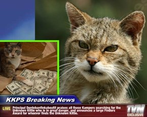 KKPS Breaking News - Principal Dontebanfinkaboutit praises all those Kampers searching for the Unknown Kittie who is in great danger, and announces a large Finders Award for whoever finds the Unknown Kittie.
