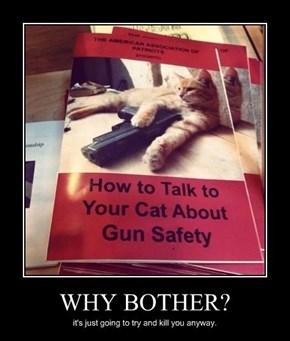 Guns Don't Kill People, Cats Do