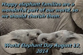 Happy elephant families are a wonderful part of our world, so we should cherish them.  World Elephant Day August 12, 2014