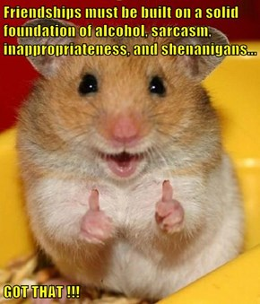 Friendships must be built on a solid foundation of alcohol, sarcasm, inappropriateness, and shenanigans...  GOT THAT !!!
