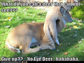 What do you call a deer that can not see???  Give up??....No Eye Deer...hahahaha