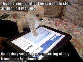 Those stupid political guys need to stop arguing all the time.  Can't they see they are upsetting all my friends on Facebook?