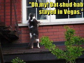 """Oh my! Dat shud hab                                                                                                 stayed in Vegas."""